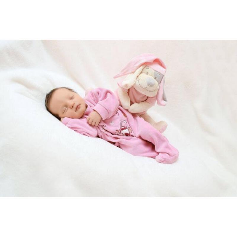 Умная игрушка Doodoo Babiage Собачка розовая фото